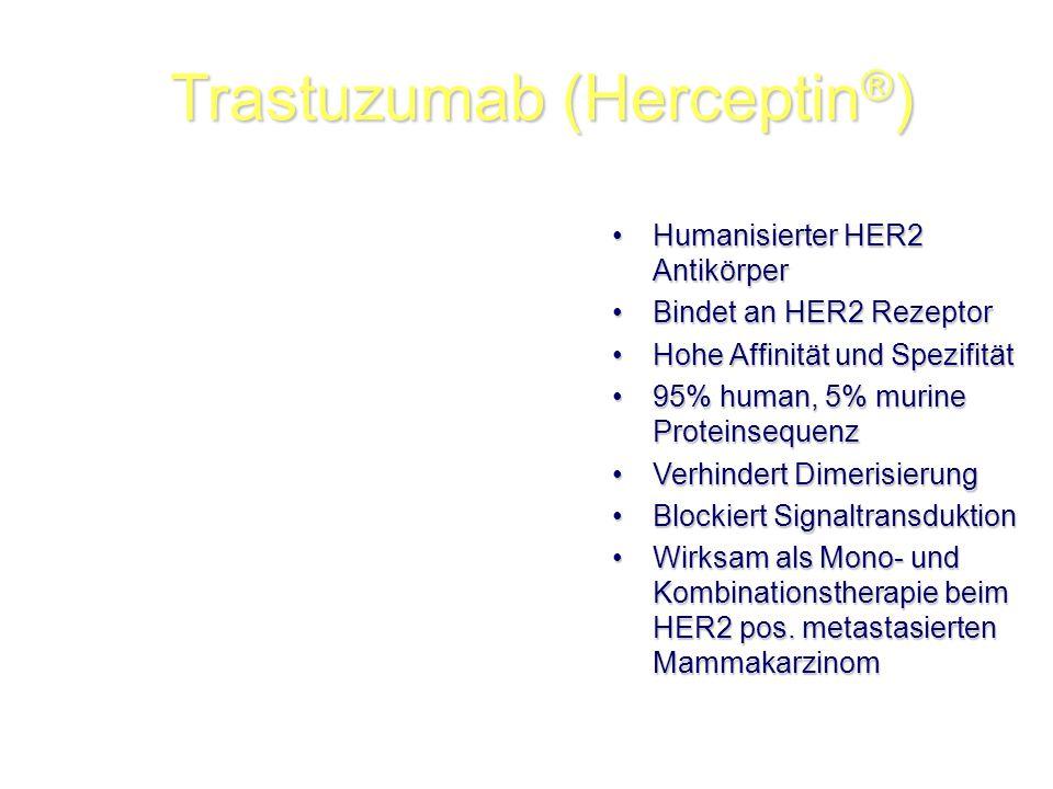 Trastuzumab (Herceptin®)