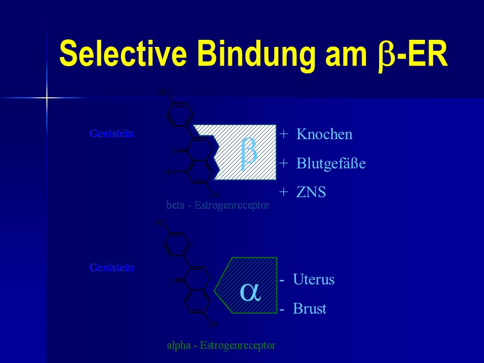 Selective Bindung am -ER