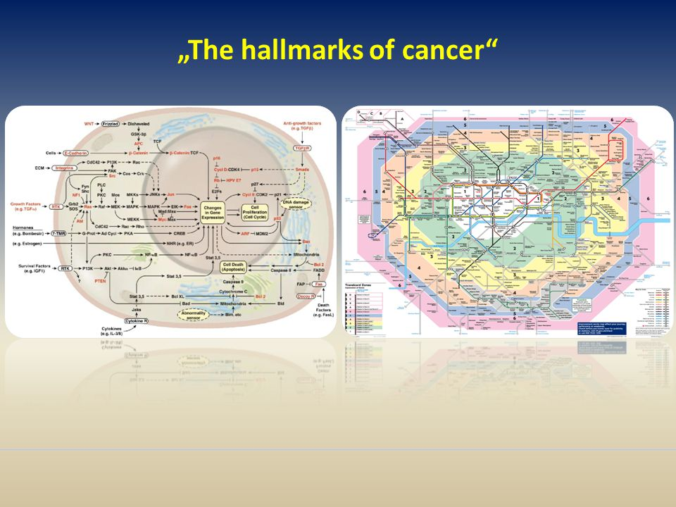 """The hallmarks of cancer"