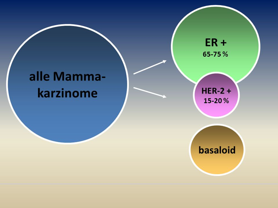 ER + 65-75 % alle Mamma- karzinome HER-2 + 15-20 % basaloid