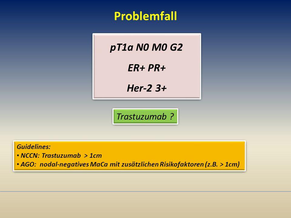 Problemfall pT1a N0 M0 G2 ER+ PR+ Her-2 3+ Trastuzumab Guidelines: