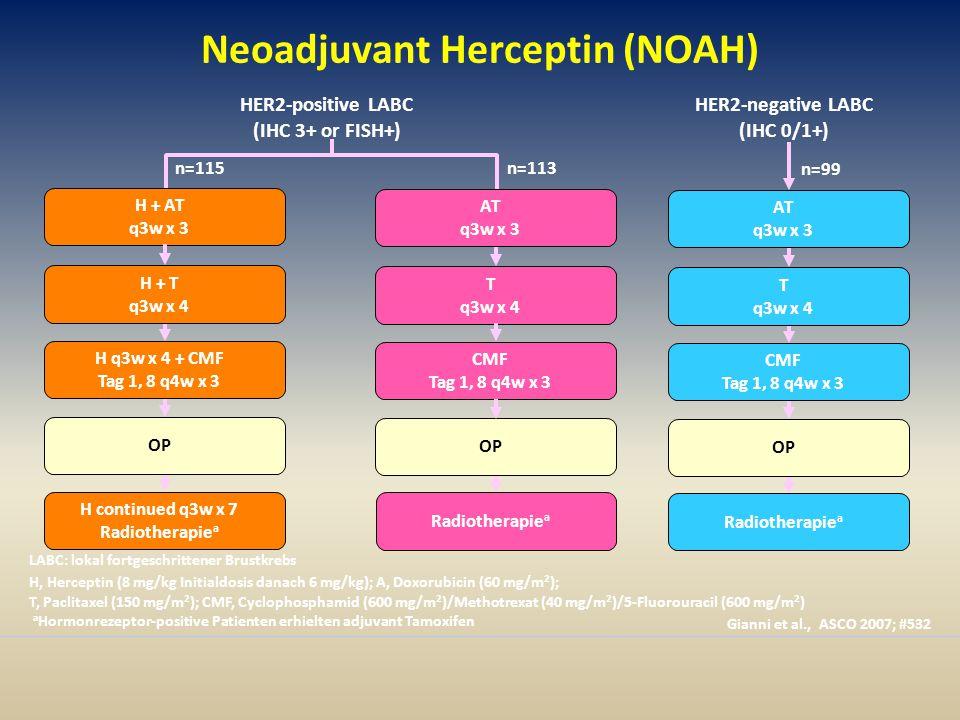 Neoadjuvant Herceptin (NOAH)