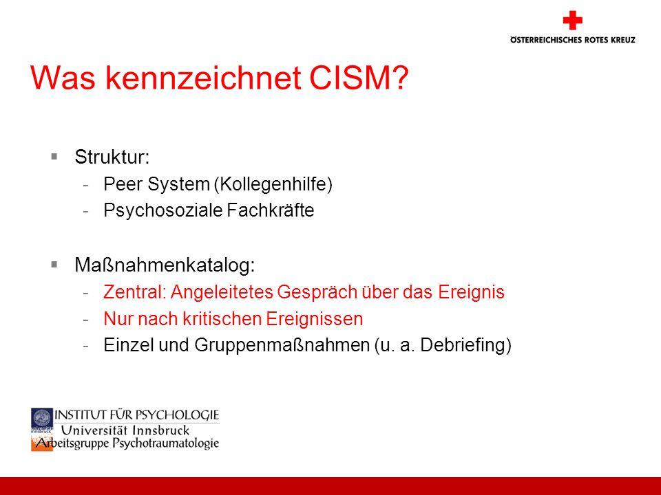 Was kennzeichnet CISM Struktur: Maßnahmenkatalog: