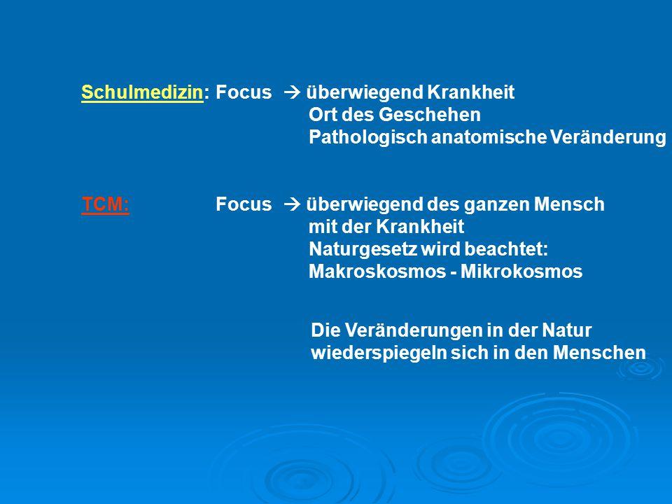 Schulmedizin: Focus  überwiegend Krankheit