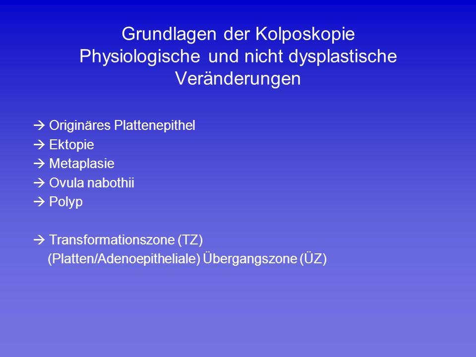 Grundlagen der Kolposkopie Physiologische und nicht dysplastische Veränderungen