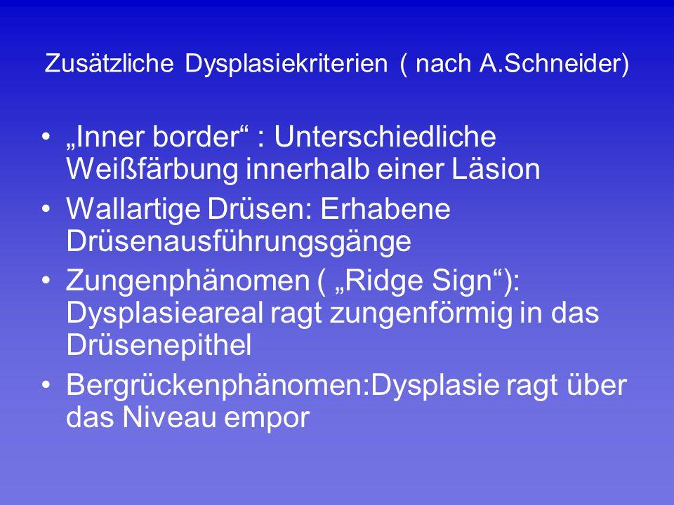 Zusätzliche Dysplasiekriterien ( nach A.Schneider)