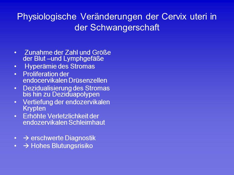 Physiologische Veränderungen der Cervix uteri in der Schwangerschaft