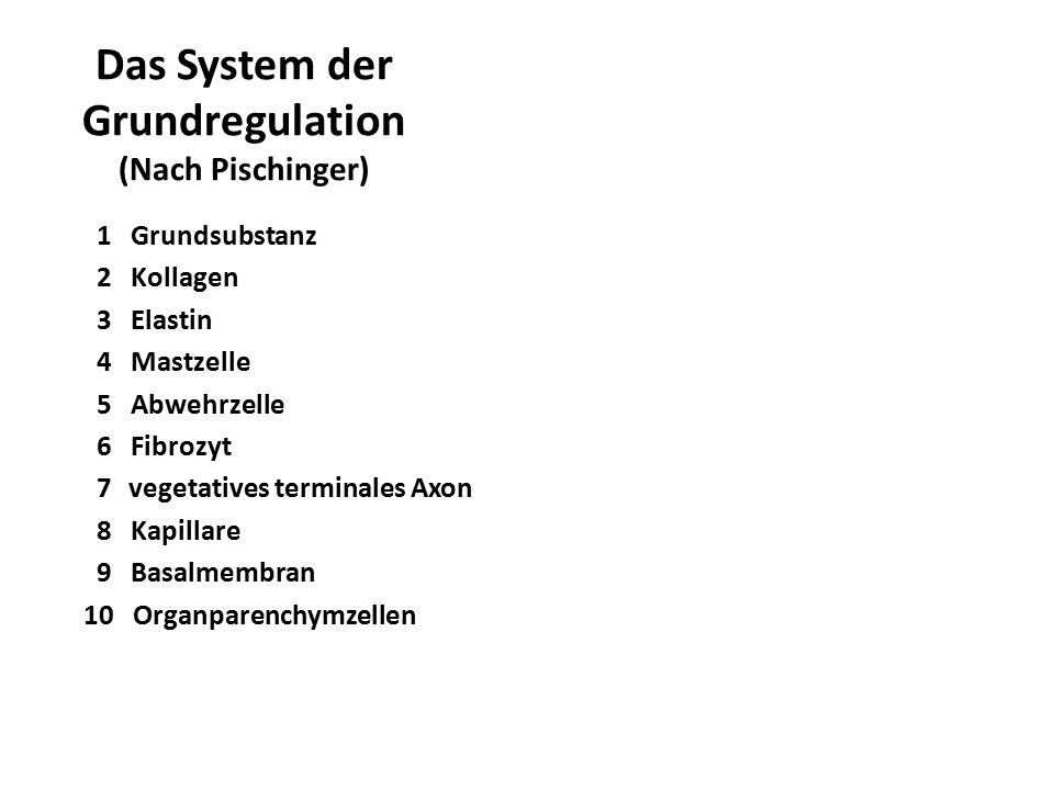 Das System der Grundregulation (Nach Pischinger)