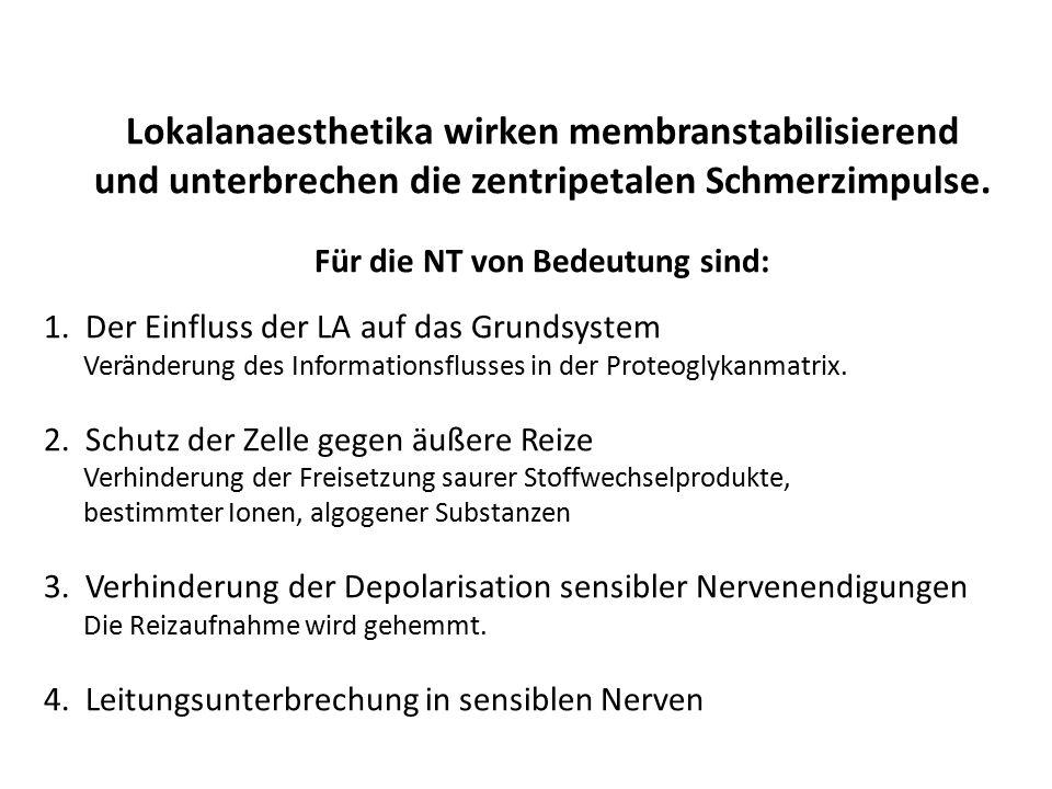 Für die NT von Bedeutung sind: