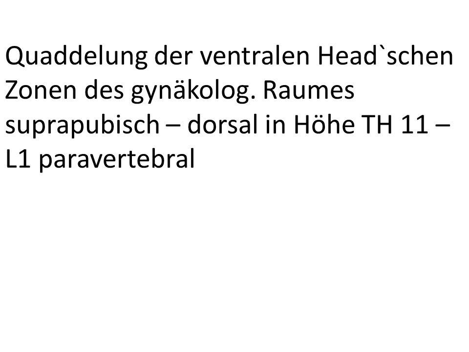 Quaddelung der ventralen Head`schen Zonen des gynäkolog