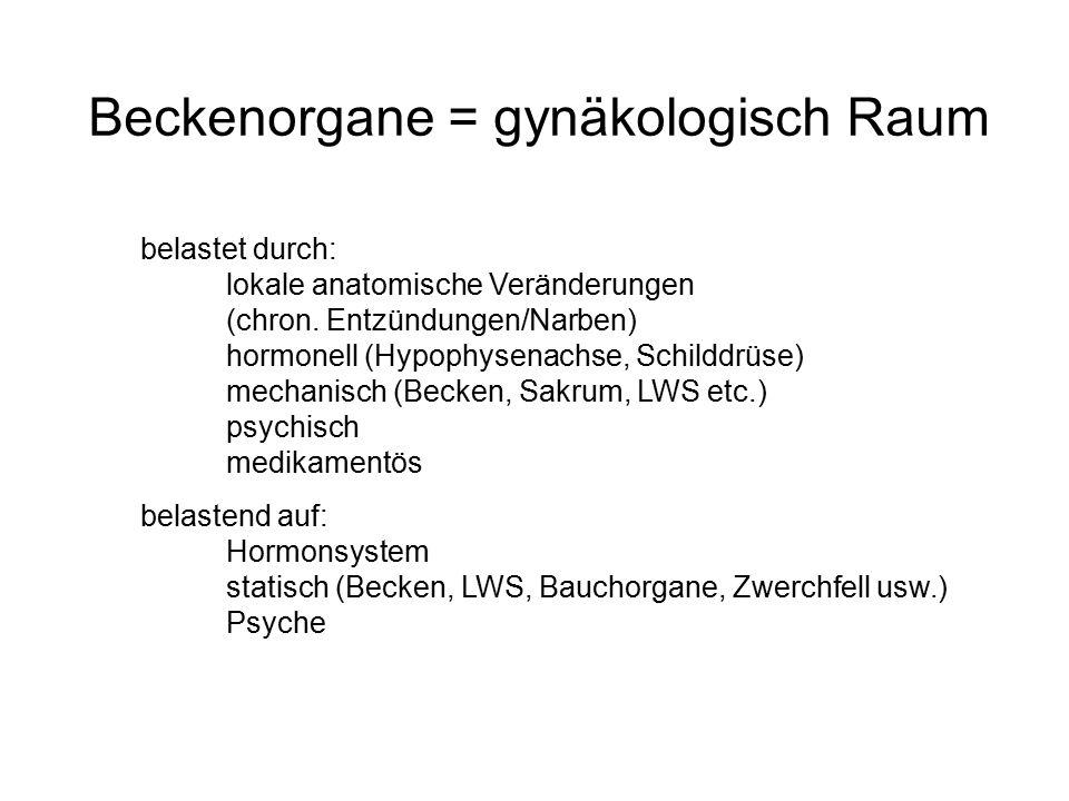 Beckenorgane = gynäkologisch Raum