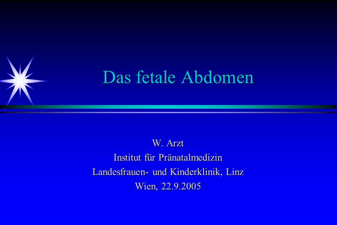 Das fetale Abdomen W. Arzt Institut für Pränatalmedizin