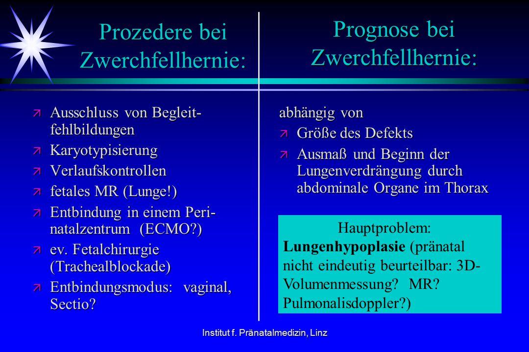 Prozedere bei Zwerchfellhernie: