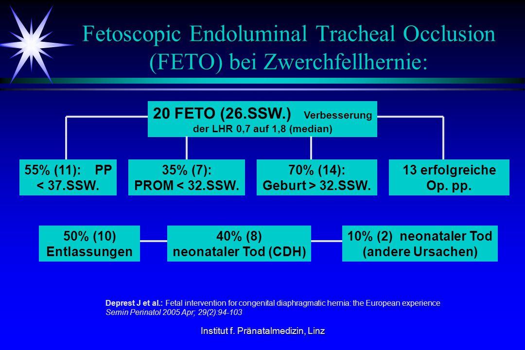 Fetoscopic Endoluminal Tracheal Occlusion (FETO) bei Zwerchfellhernie: