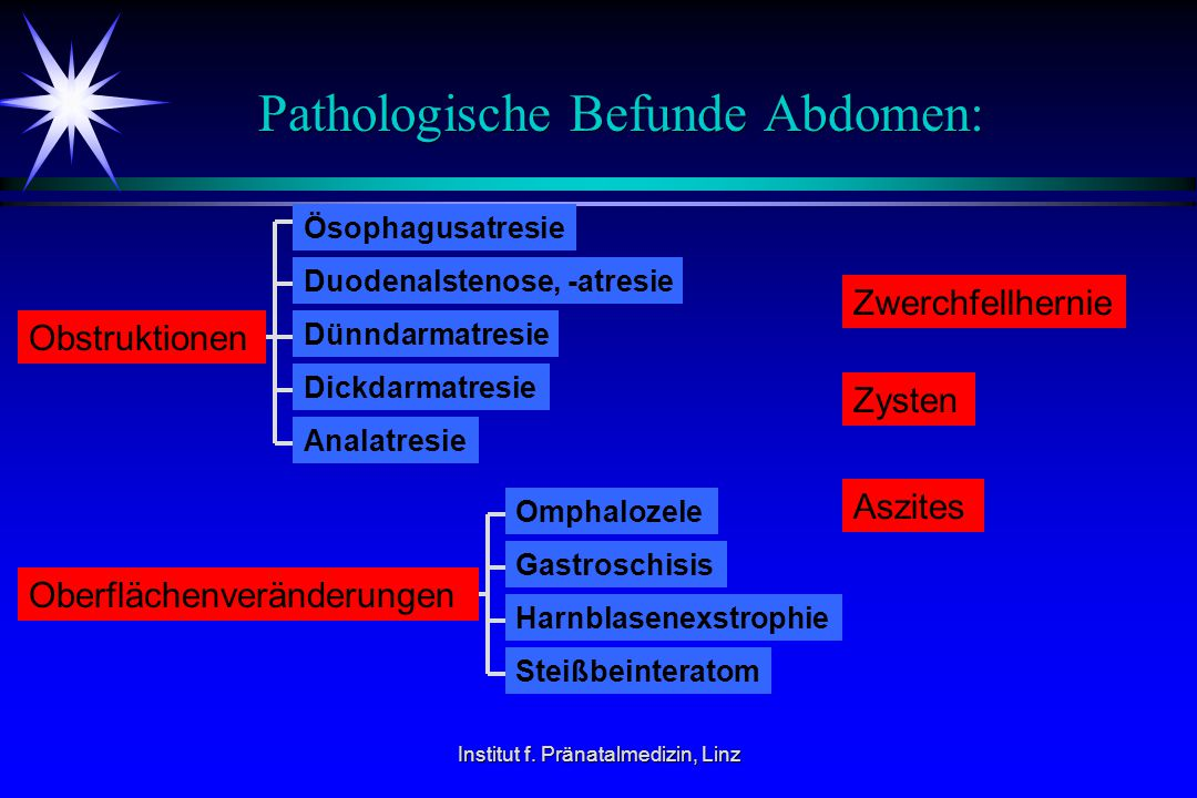 Pathologische Befunde Abdomen: