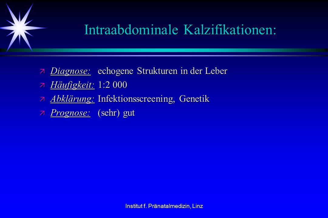Intraabdominale Kalzifikationen: