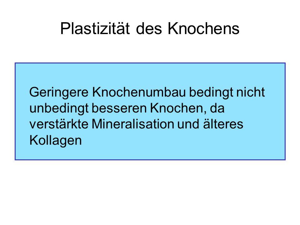 Plastizität des Knochens