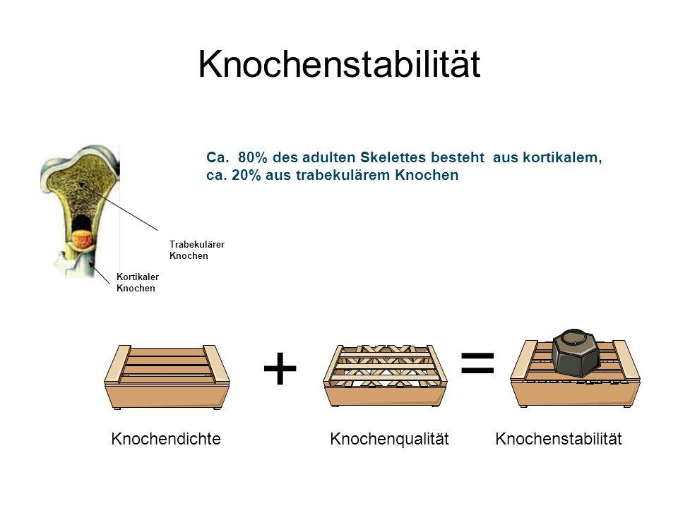 = + Knochenstabilität Knochendichte Knochenqualität Knochenstabilität