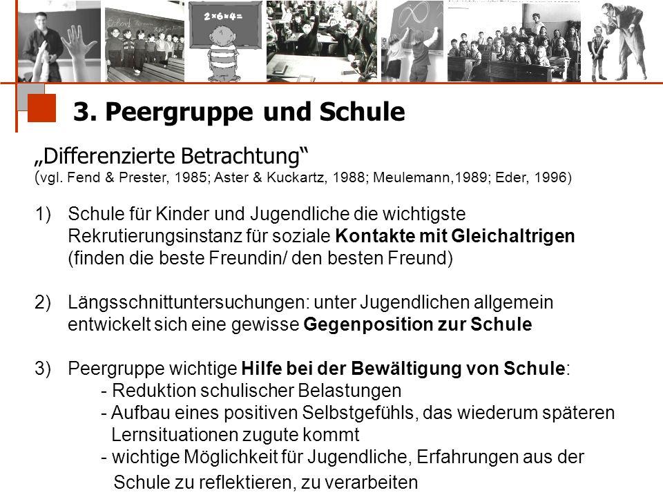 """3. Peergruppe und Schule """"Differenzierte Betrachtung"""