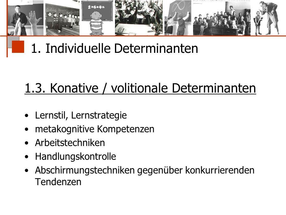 1. Individuelle Determinanten