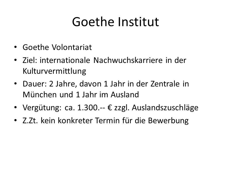 Goethe Institut Goethe Volontariat