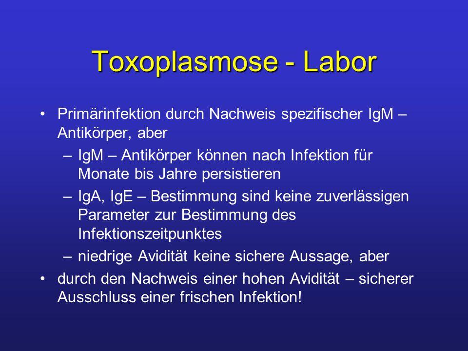 Toxoplasmose - Labor Primärinfektion durch Nachweis spezifischer IgM – Antikörper, aber.