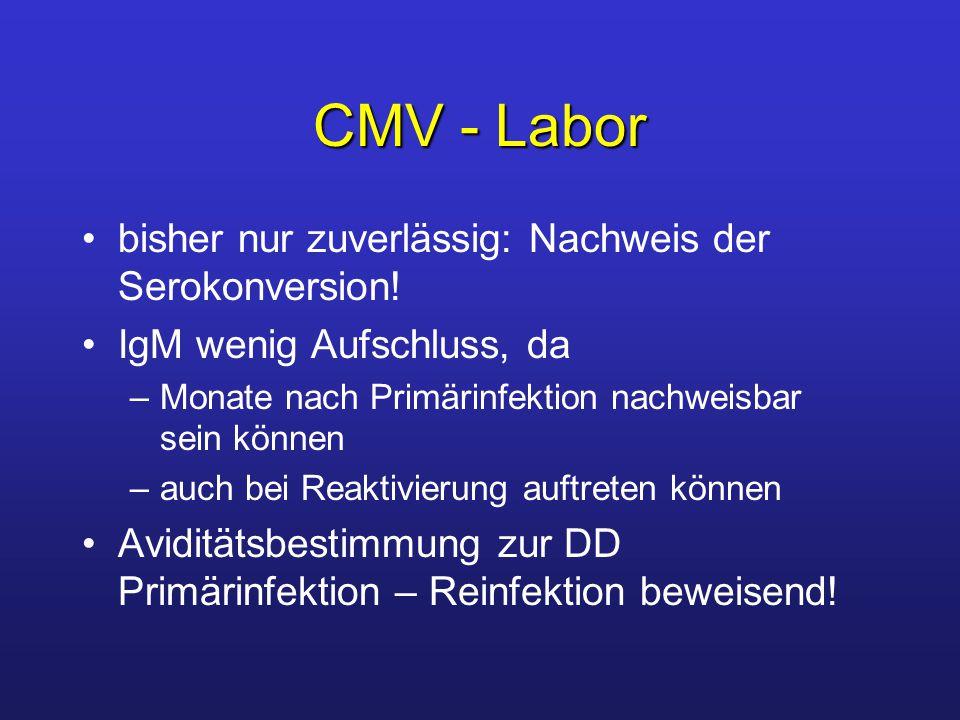 CMV - Labor bisher nur zuverlässig: Nachweis der Serokonversion!