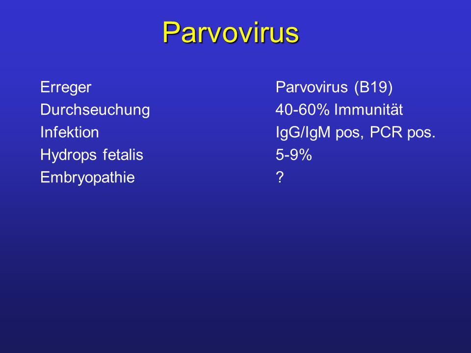 Parvovirus Erreger Parvovirus (B19) Durchseuchung 40-60% Immunität