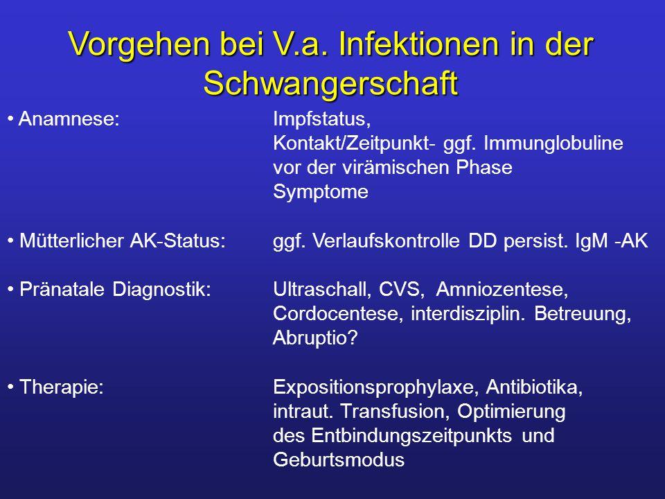 Vorgehen bei V.a. Infektionen in der Schwangerschaft