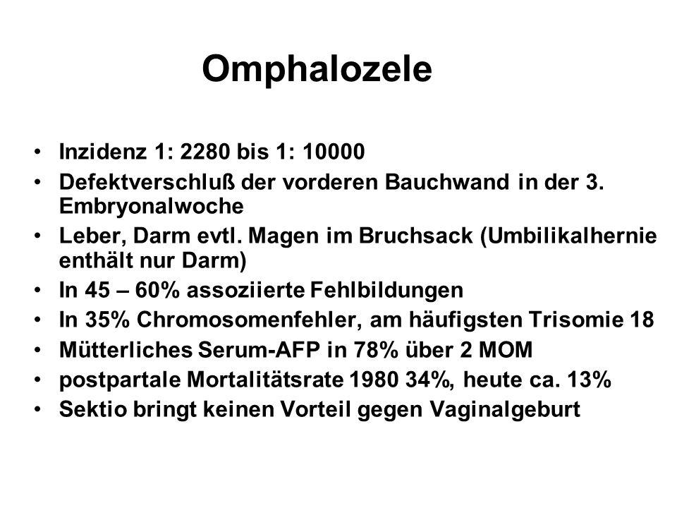 Omphalozele Inzidenz 1: 2280 bis 1: 10000