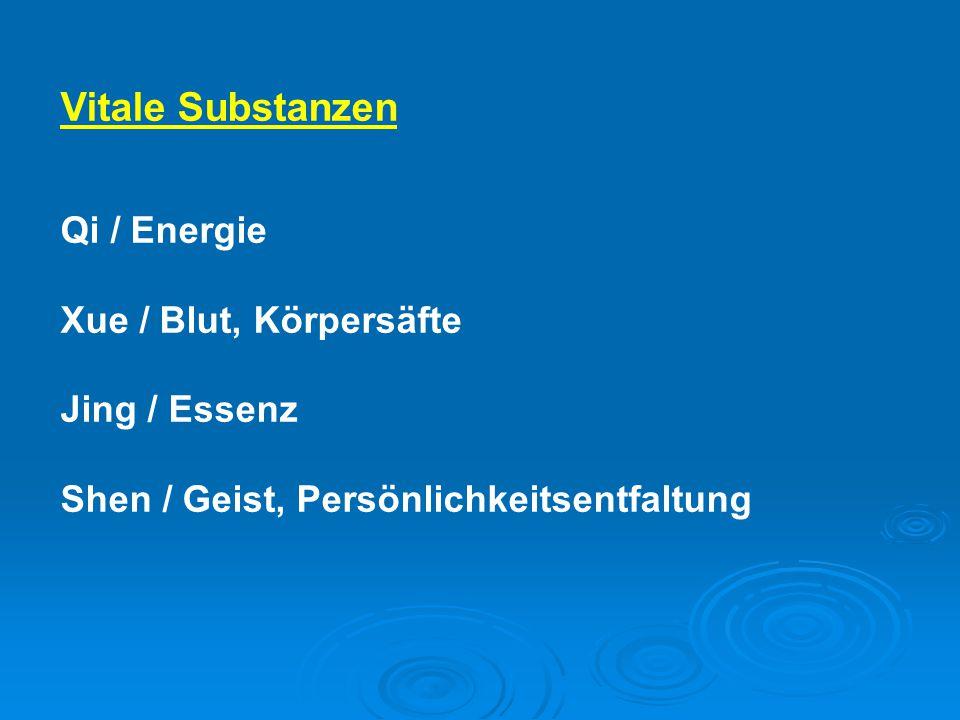 Vitale Substanzen Qi / Energie Xue / Blut, Körpersäfte Jing / Essenz