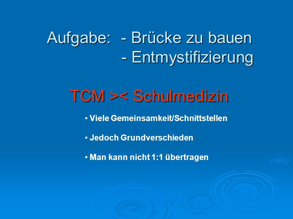 Aufgabe: - Brücke zu bauen - Entmystifizierung TCM >< Schulmedizin