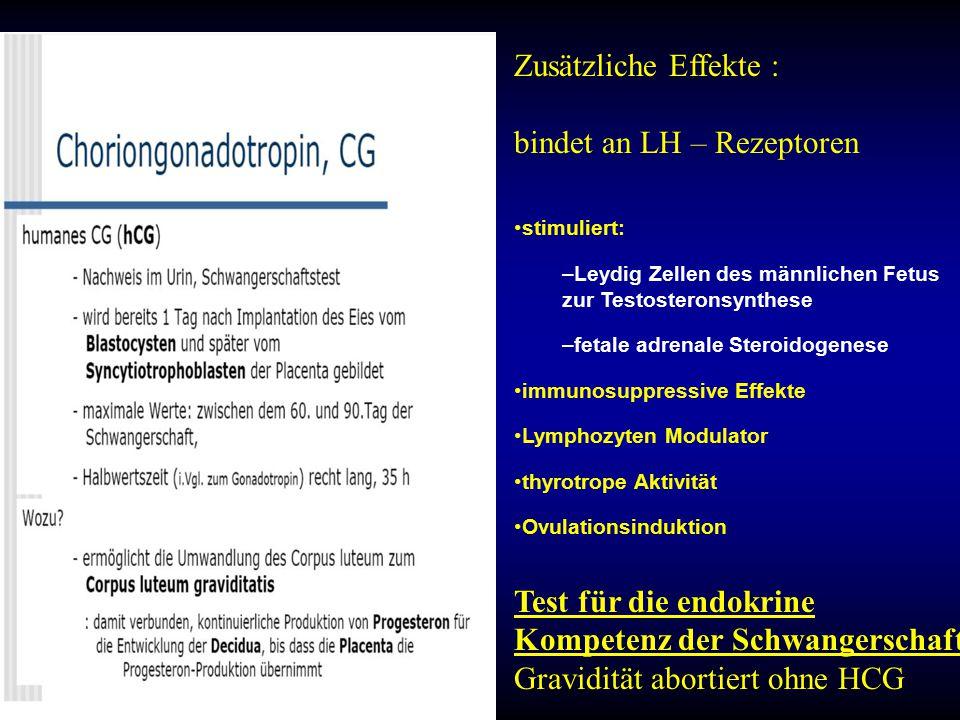 bindet an LH – Rezeptoren