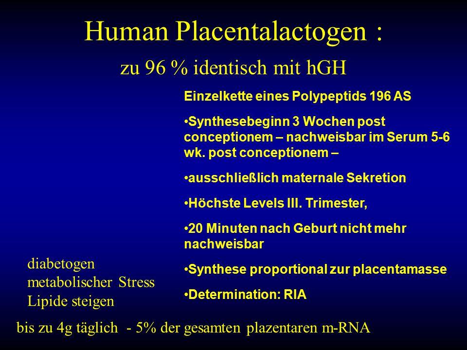 Human Placentalactogen : zu 96 % identisch mit hGH
