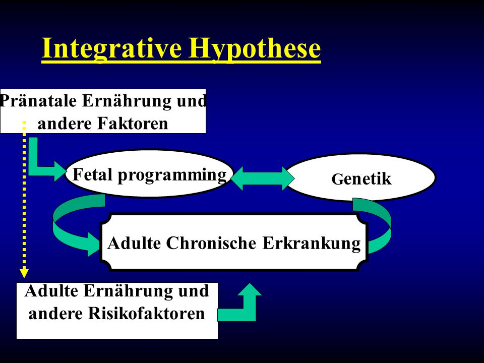 Integrative Hypothese