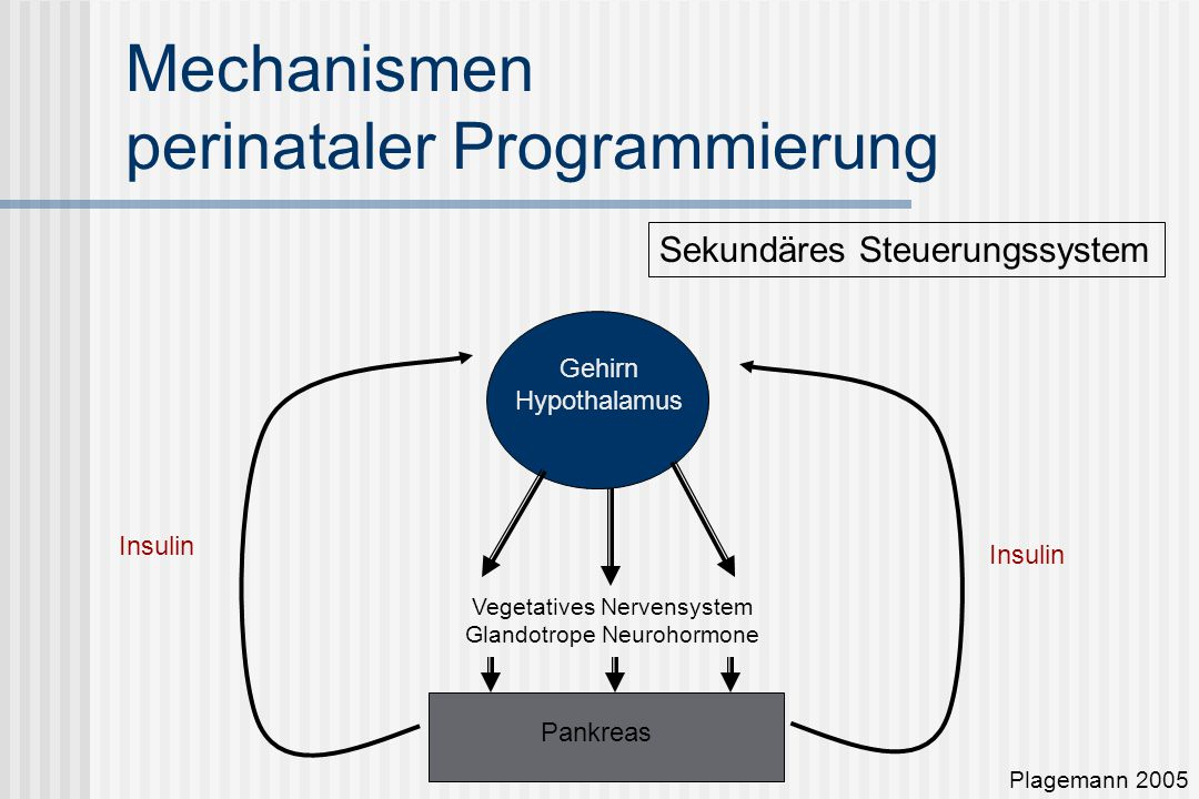 behandlung vegetatives nervensystem