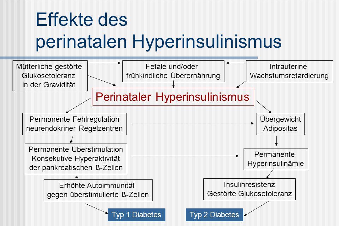 Effekte des perinatalen Hyperinsulinismus
