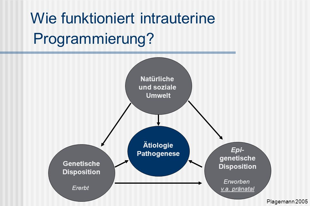 Wie funktioniert intrauterine