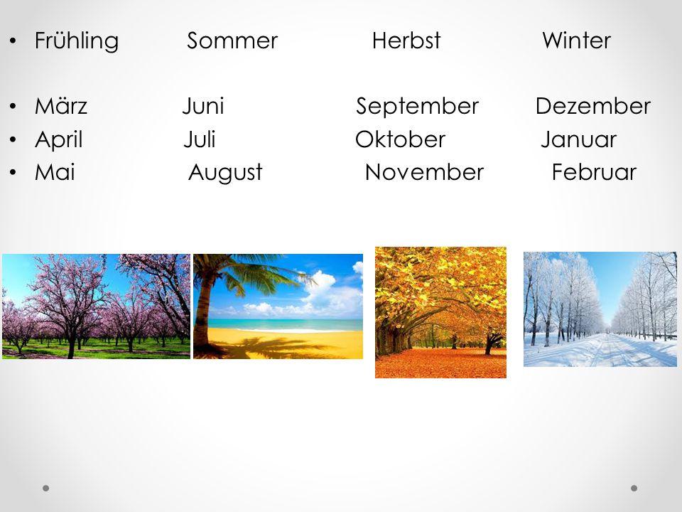 Frühling Sommer Herbst Winter