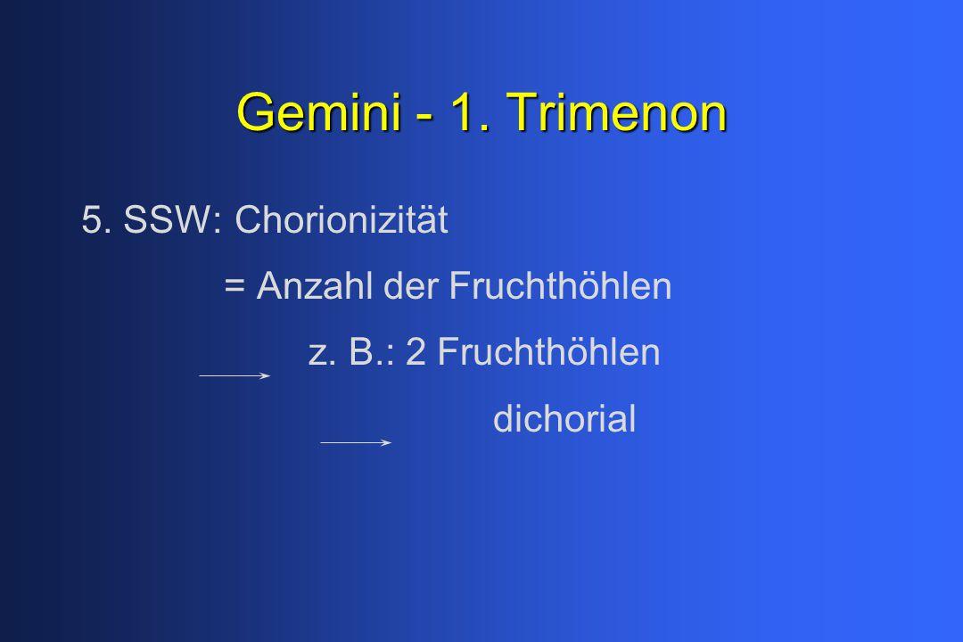 Gemini - 1. Trimenon 5. SSW: Chorionizität = Anzahl der Fruchthöhlen