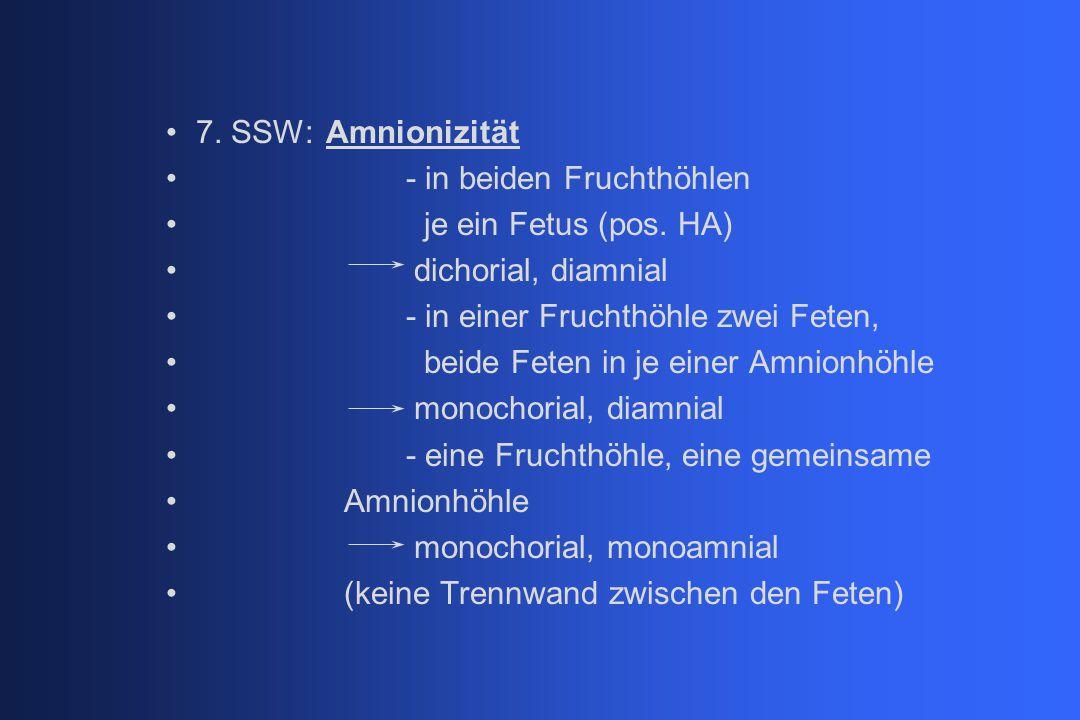 7. SSW: Amnionizität - in beiden Fruchthöhlen. je ein Fetus (pos. HA) dichorial, diamnial. - in einer Fruchthöhle zwei Feten,