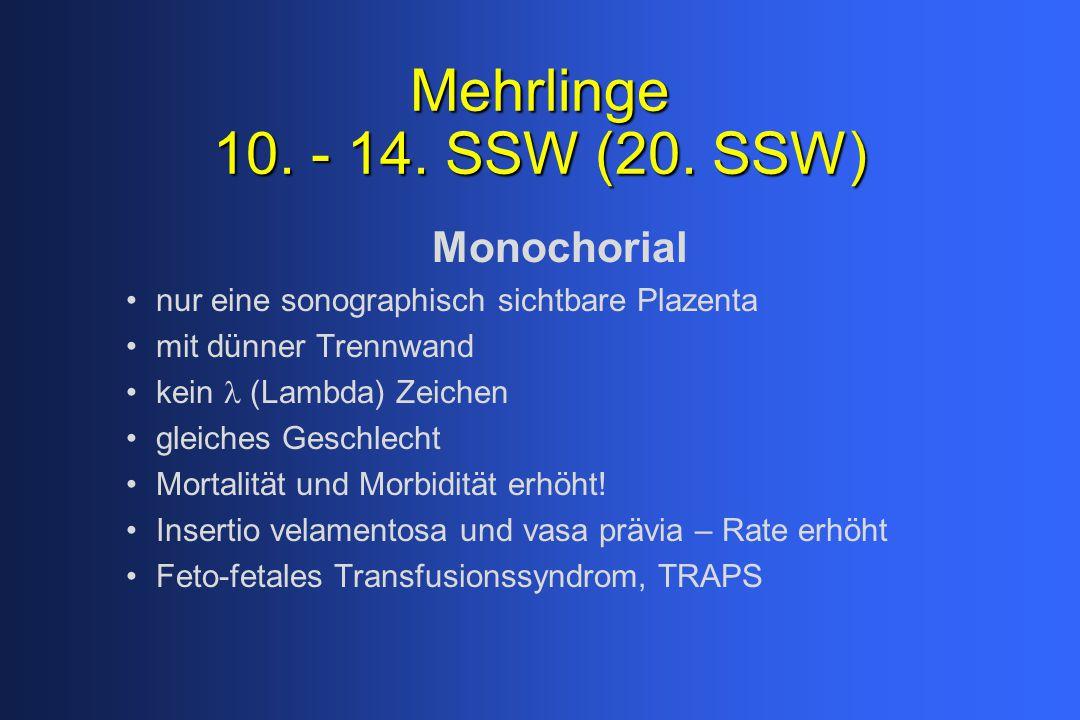 Mehrlinge 10. - 14. SSW (20. SSW) Monochorial