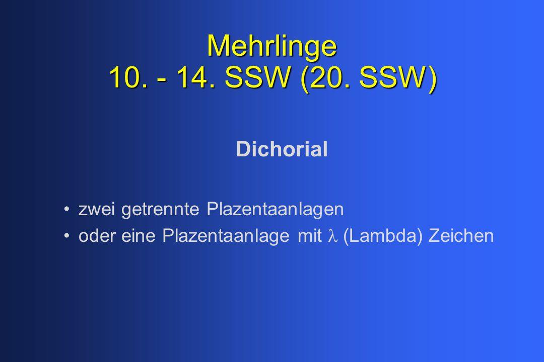 Mehrlinge 10. - 14. SSW (20. SSW) Dichorial