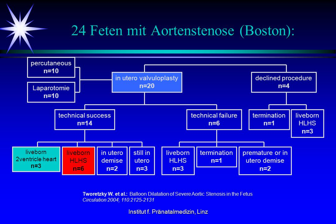 24 Feten mit Aortenstenose (Boston):