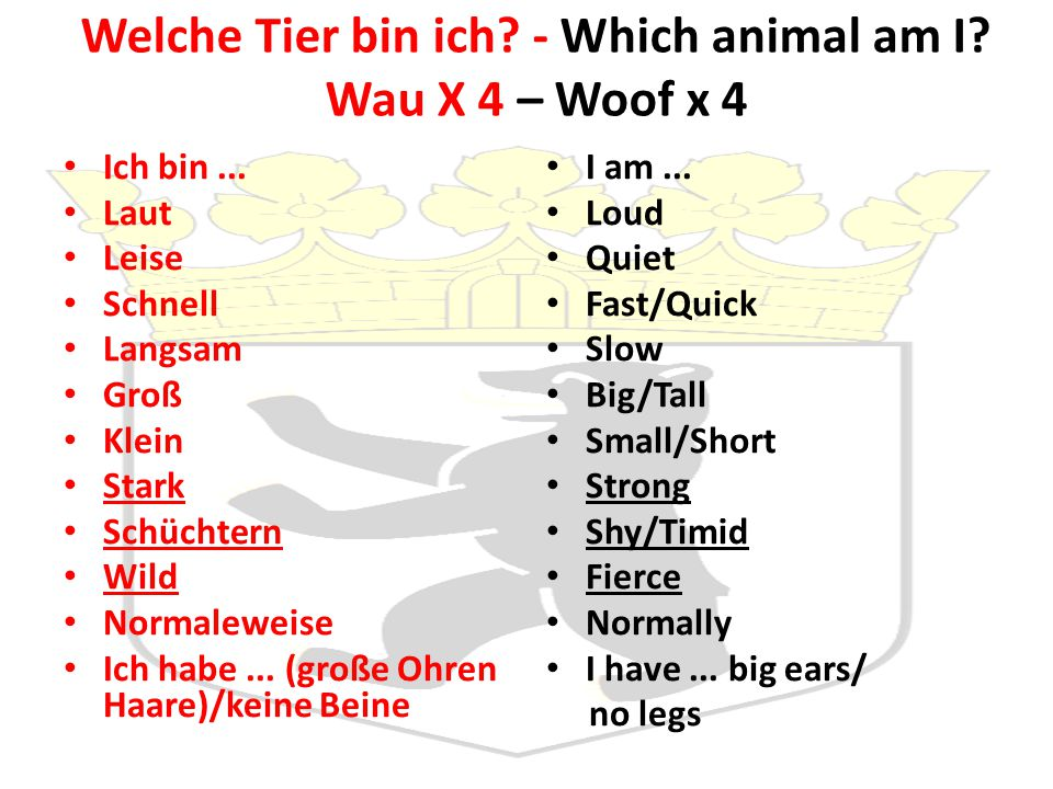 Welche Tier bin ich - Which animal am I Wau X 4 – Woof x 4