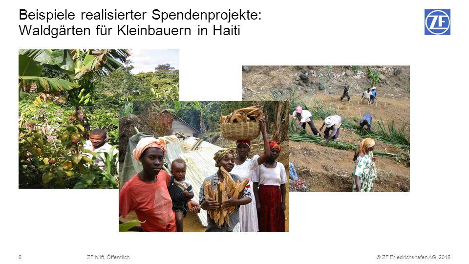 Beispiele realisierter Spendenprojekte: Waldgärten für Kleinbauern in Haiti