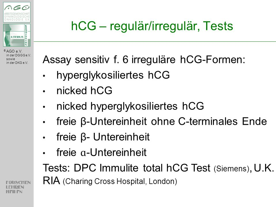 hCG – regulär/irregulär, Tests