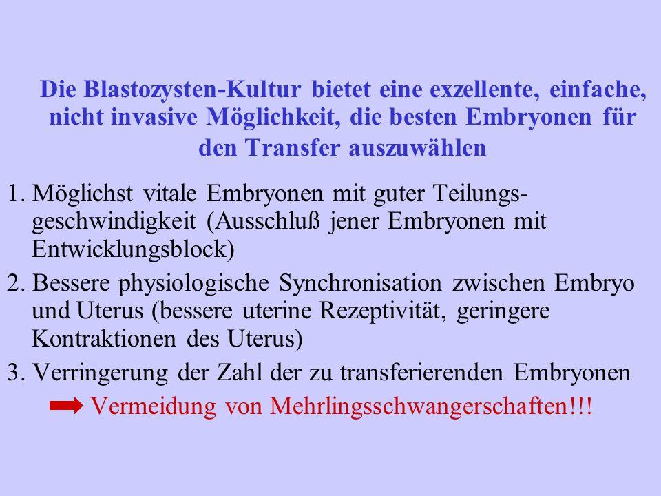 Die Blastozysten-Kultur bietet eine exzellente, einfache, nicht invasive Möglichkeit, die besten Embryonen für den Transfer auszuwählen
