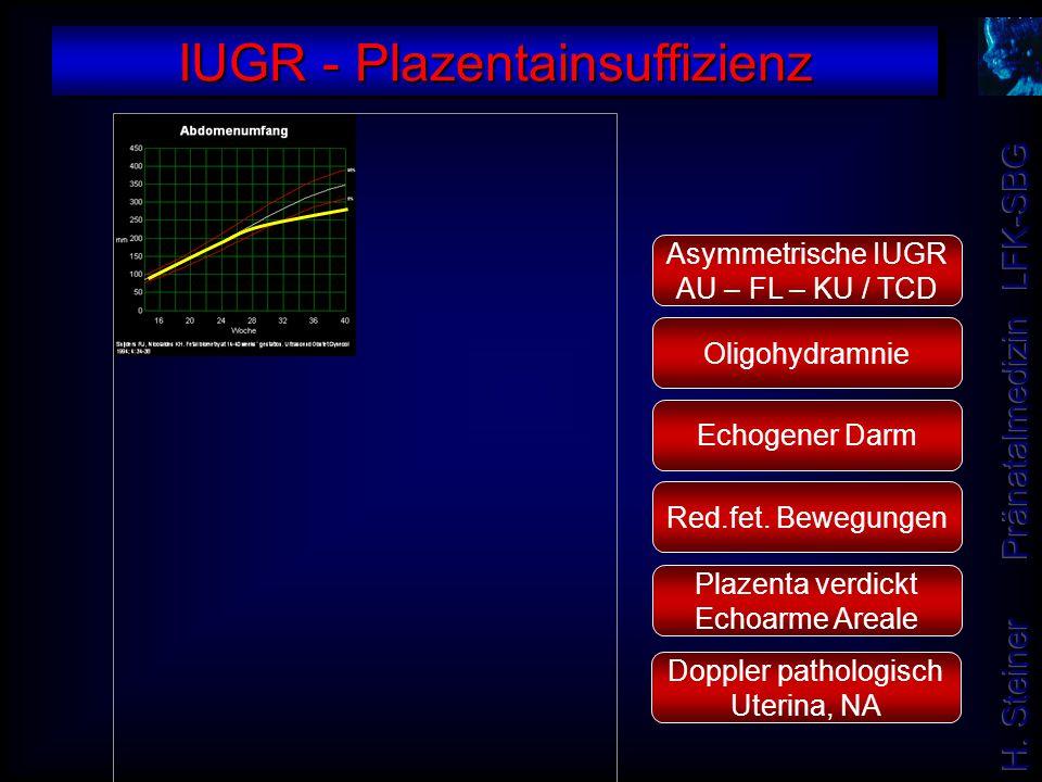 IUGR - Plazentainsuffizienz