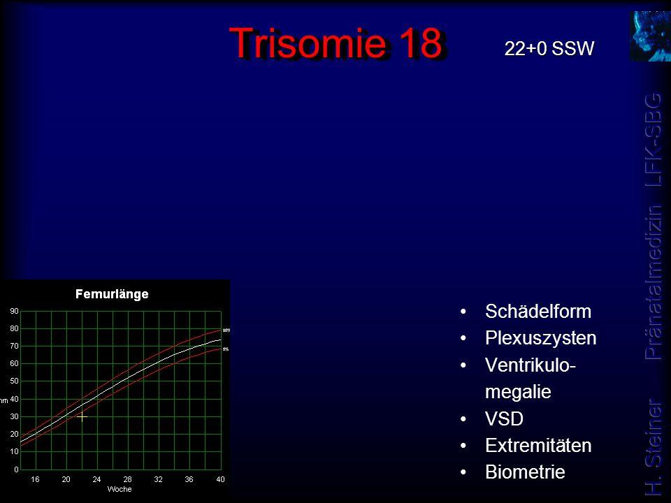 Trisomie 18 22+0 SSW Schädelform Plexuszysten Ventrikulo- megalie VSD